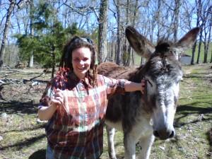 Wren and donkey