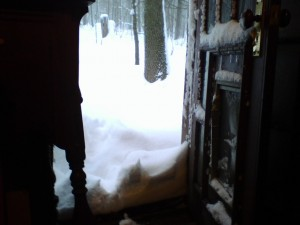 snowstorm at the back door